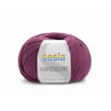 Sesia Windsurf